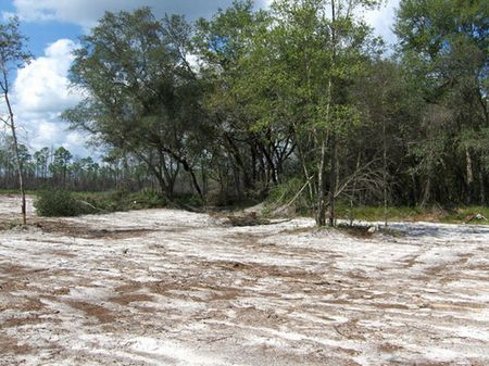 7.42 Acres (a-225) : Keystone Heights : Bradford County : Florida