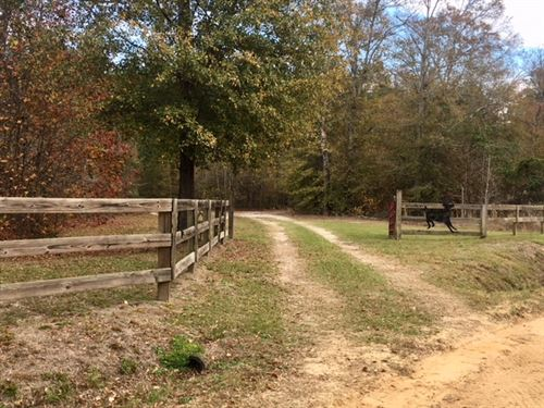 Fantastic Hunting / Family Retreat : Sparta : Hancock County : Georgia
