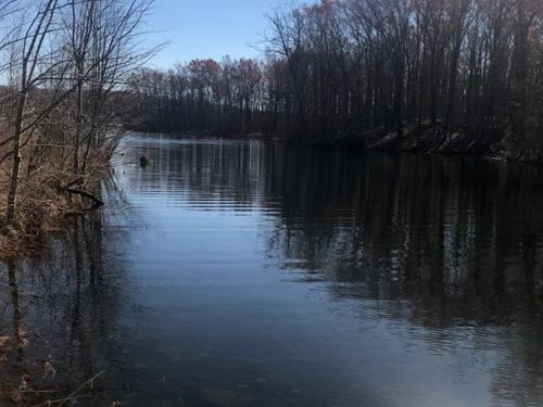 4.48+/- Acre Lake Near Sewanee : Monteagle : Grundy County : Tennessee