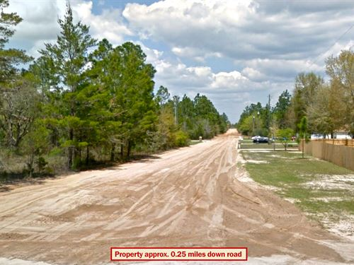 Rural Lot 30 Miles From Gulf Coast : Crestview : Okaloosa County : Florida
