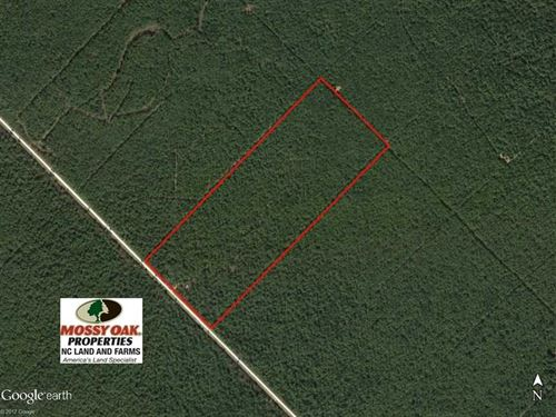 Under Contract, 60 Acres of Bear : Belhaven : Hyde County : North Carolina
