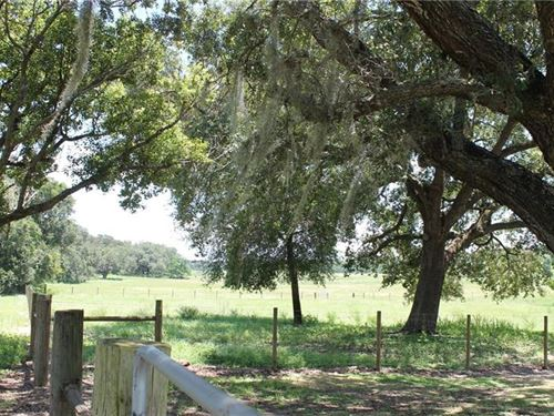 Great Location : Clermont : Lake County : Florida