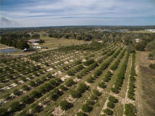 Best View In Town : Howey In The Hills : Lake County : Florida