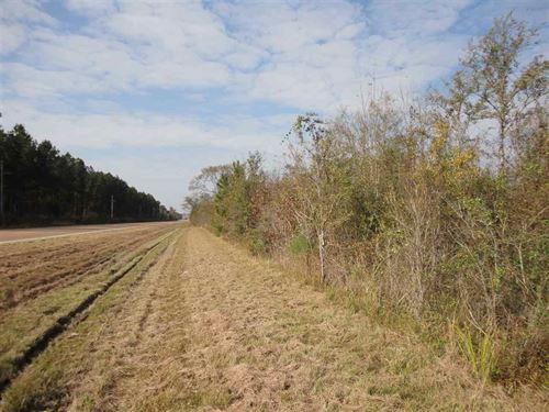 100+/- Acres : Pinola : Simpson County : Mississippi