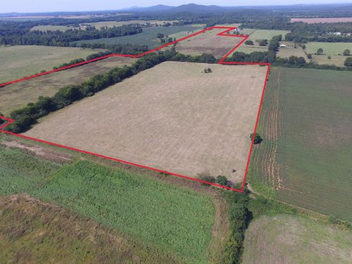 77+/- Ac, Pasture, Hay, Field, Pond : Munford : Talladega County : Alabama