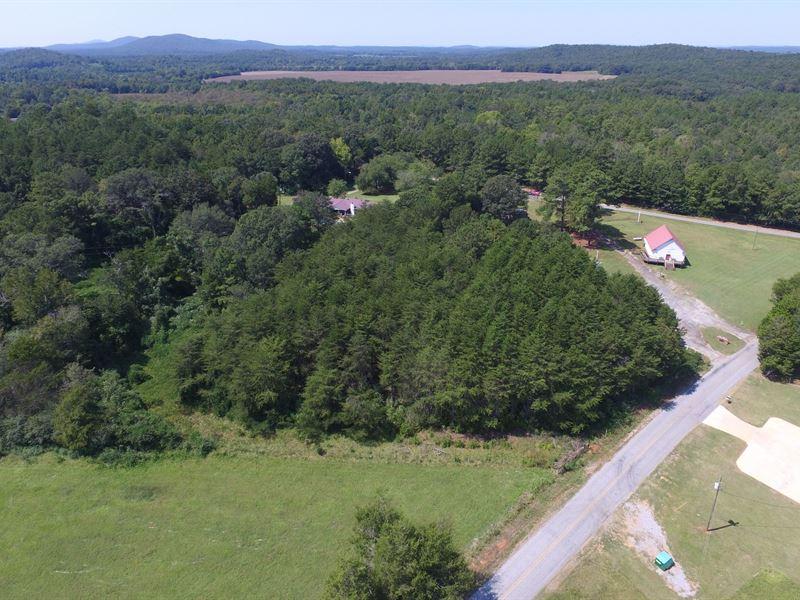 16.88+/- Acre - Wooded Homesite : Munford : Talladega County : Alabama
