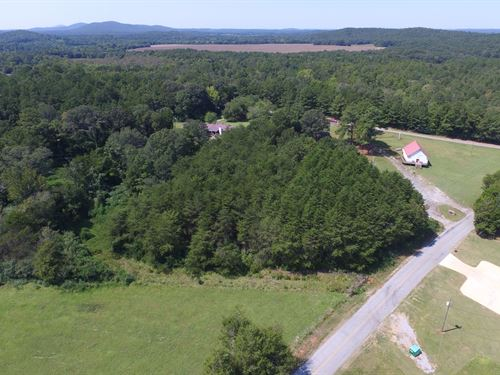 16.88+/- Acre - Wooded Homesite : Munford : Talladega County : Alabama