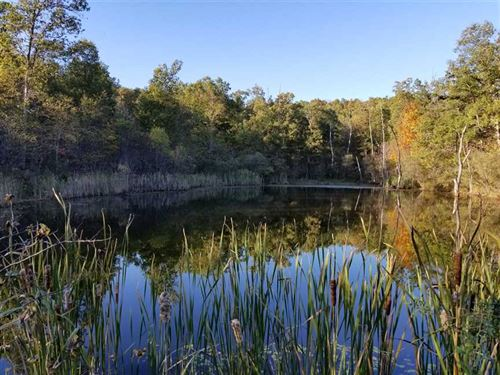 160 Acre Hunting And Rec Property : Salem, Eminence : Shannon County : Missouri