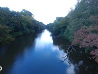 62 Acres Pasture With River Fron : Waldron : Scott County : Arkansas