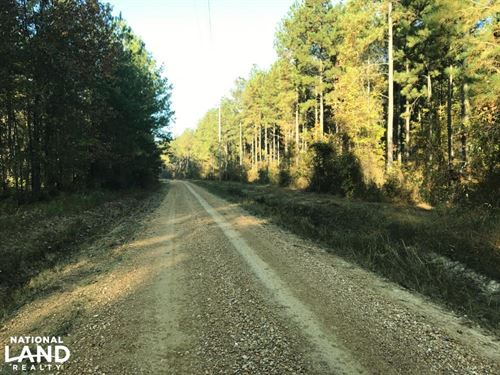 Bodka Valley Road Timber Investment : Scooba : Kemper County : Mississippi