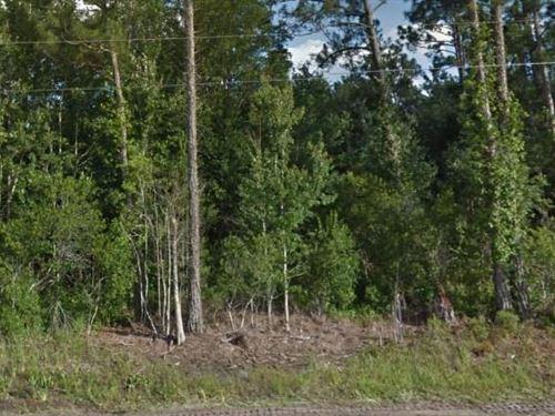 Volusia County, Fl $32,500 Neg : Deland : Volusia County : Florida