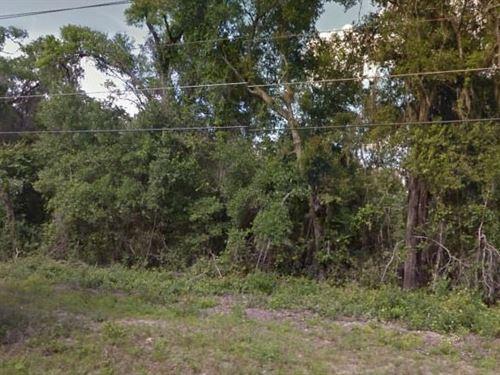 Putnam County, Fl $47,500 Neg : Hawthorne : Putnam County : Florida