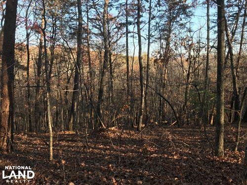 Mountain Homesite : Marietta : Greenville County : South Carolina