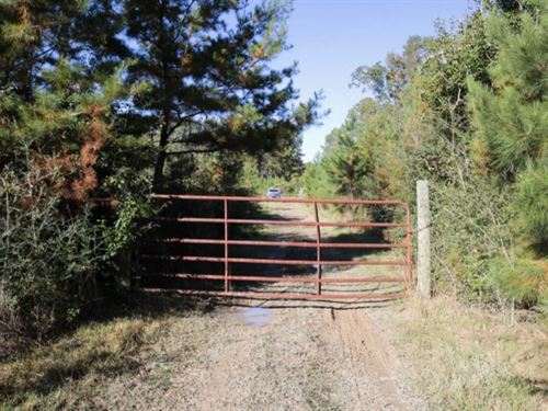 51.2 Acres In Greene County, Ms : McLain : Greene County : Mississippi
