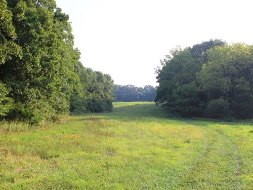 Hunting & Recreational Property : Jonesburg : Warren County : Missouri