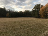 40 Acres Of Timber And Pasture : Okolona : Monroe County : Mississippi
