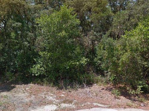 Highlands County, Fl $19,999 Neg : Sebring : Highlands County : Florida