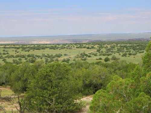 Quiet Secluded Northern Arizona Ran : St. Johns : Apache County : Arizona