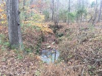 104.15 Acres in Chester, SC : Chester : Chester County : South Carolina