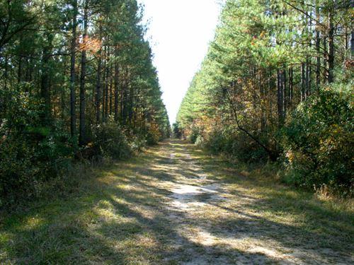 McKinnon 212 : Lumberton : Robeson County : North Carolina