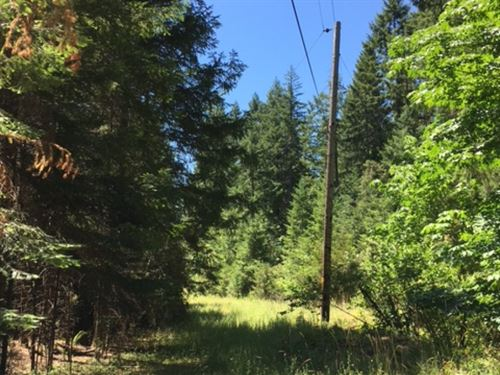 Kelly McCullum Creek : Glendale : Douglas County : Oregon