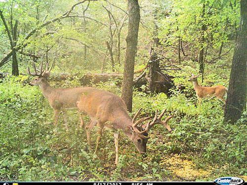 920 Acres, Hunting, Riverfront : Ada : Pontotoc County : Oklahoma
