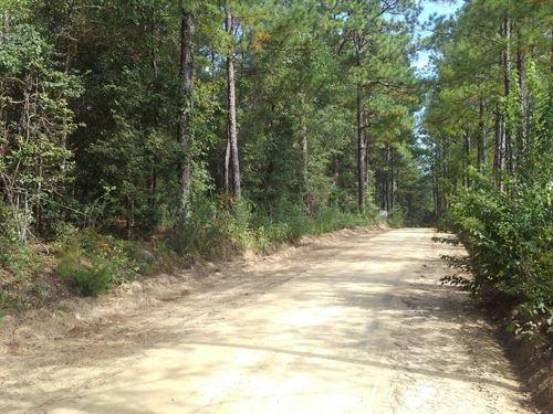 Truett Circle : Bonifay : Holmes County : Florida
