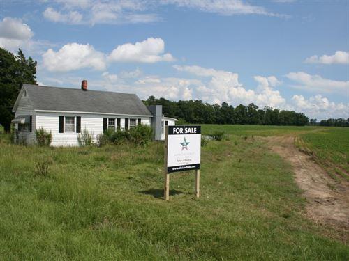 Phelps Family Farm : Plymouth : Washington County : North Carolina