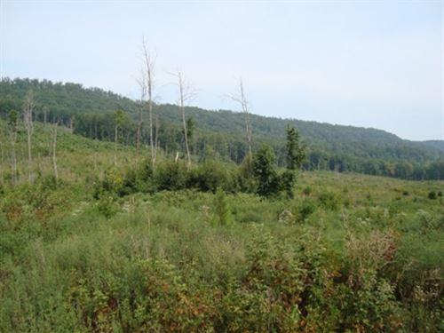 1126 : Dayton : Rhea County : Tennessee