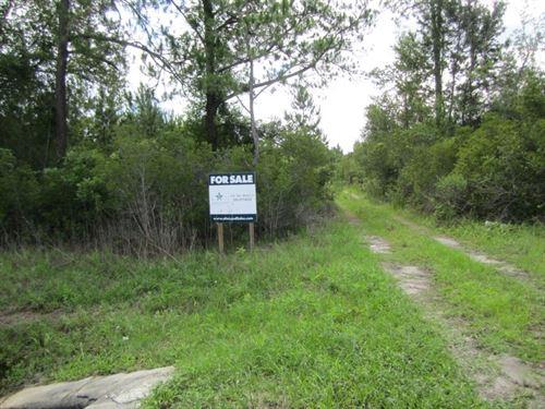 14A-4 301 East Side : Hawthorne : Alachua County : Florida