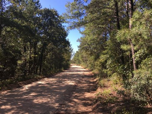 Evans Road 45 : Vernon : Washington County : Florida