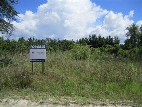 14A-2 Lochloosa E 301 : Hawthorne : Alachua County : Florida