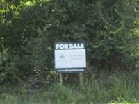 14A-3 North Lochloosa : Hawthorne : Alachua County : Florida