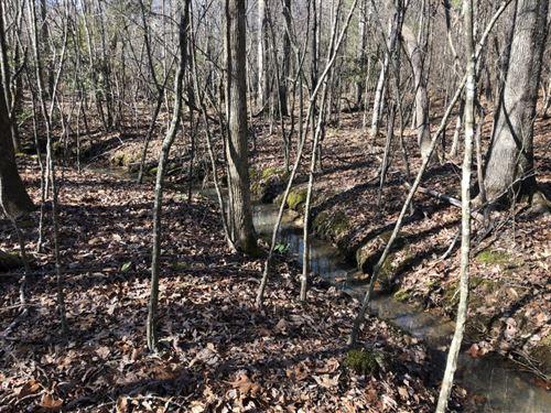 Candor Pines : Candor : Montgomery County : North Carolina