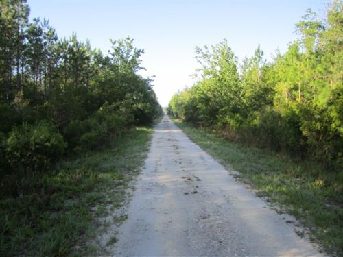 CR 340 & E 231 South : Gainesville : Alachua County : Florida