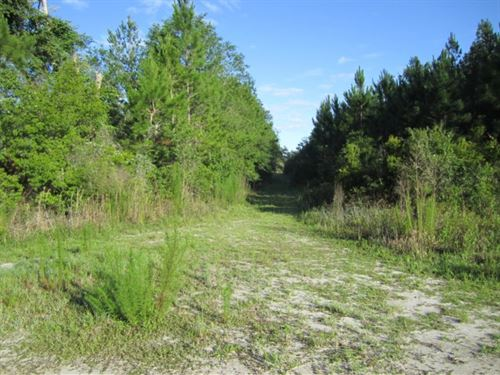 Cr 340 & E231 Sw : Gainesville : Alachua County : Florida