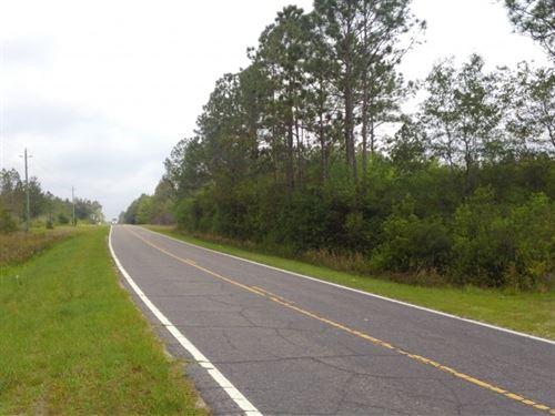 Little Bear Creek West : Panama City : Bay County : Florida