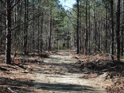Holly Hill : Holly Hill : Orangeburg County : South Carolina