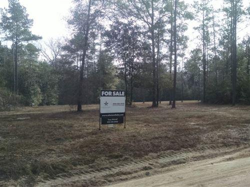 Evelyn's Roost : Clarksville : Calhoun County : Florida