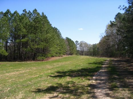 Best Priced Tract : Milledgeville : Baldwin County : Georgia