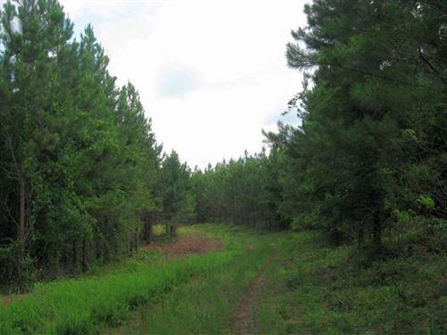 Pitts Chapel East : Opelika : Lee County : Alabama