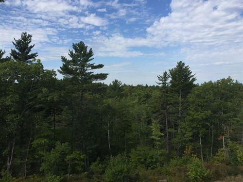 Albis Tract : Woolwich : Sagadahoc County : Maine