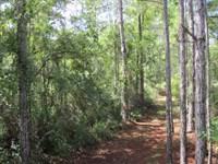 Marshall Bradford Co : Starke : Bradford County : Florida