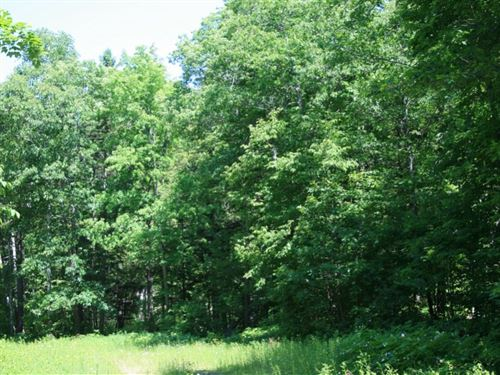 Huron Timbers - Burnt Mountain : Marquette : Michigan