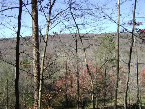Wyatt Rhea 38 Acres : Dayton : Rhea County : Tennessee