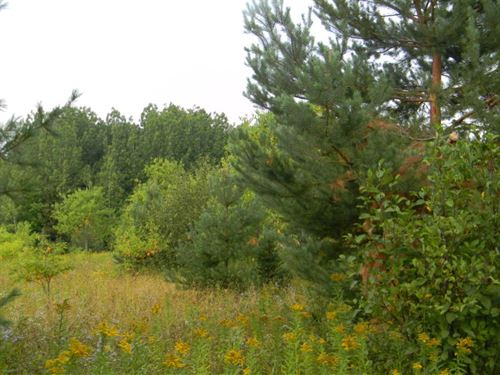 33157 Paavola Road : Chassell : Houghton County : Michigan