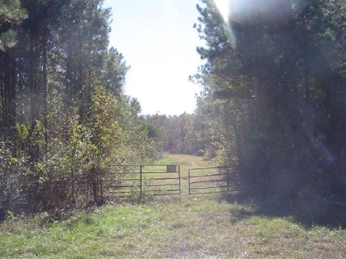 167 Acres in Carthage, MS : Carthage : Leake County : Mississippi