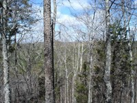 Tellico Lake Tract Price Reduced : Vonore : Monroe County : Tennessee