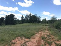 154 Acres Located in Southern : Moundville : Tuscaloosa County : Alabama