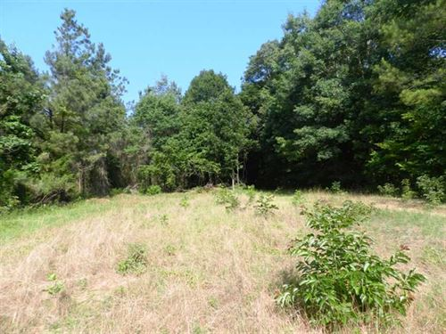 Certified Tree Farm Near Amory, MI : Hatley : Monroe County : Mississippi